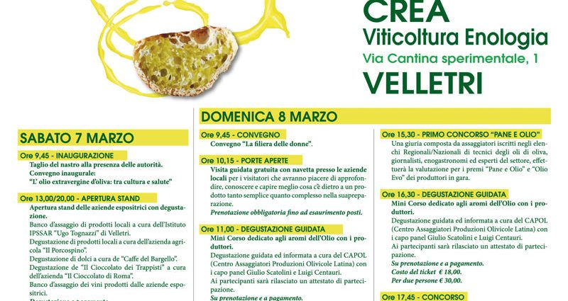 """Velletri, """"Pane e olio"""": un appuntamento all'insegna della riscoperta della qualità dei prodotti del territorio 1"""